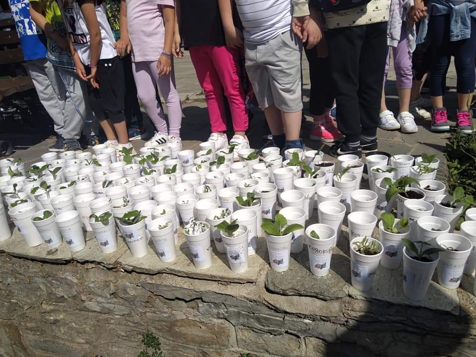 Offer of vegetables from the 1st Primary School of Siatista